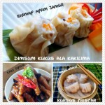DIMSUM KKS (FILEminimizer)