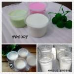yogurt(FILEminimizer)